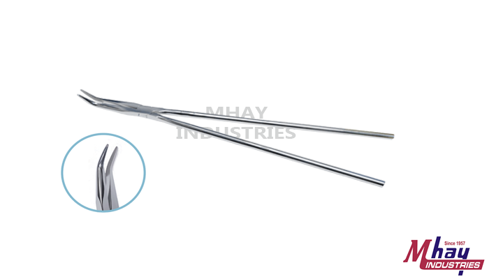 Equine Dental Fragment Forceps Serrated Jaws
